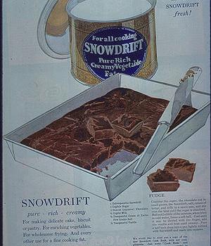 300px-Snowdrift_fudge