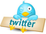 Microblogging: 20 Do's and Don'ts for Using Twitter to Build Your Blog or your Brand