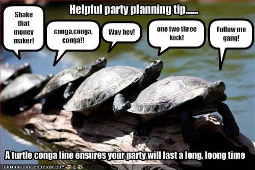 turtle conga