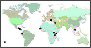 Kiva partners around the world (September 2006)